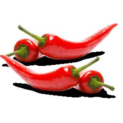 pasta al peperoncino